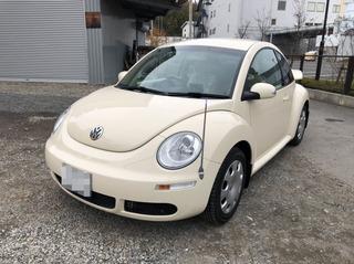 Beetle001.jpg