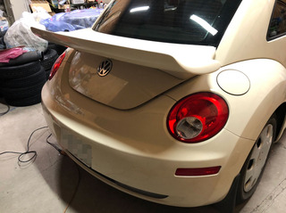 Beetle003.jpg